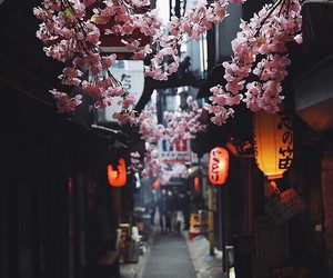 japan, light, and travel image