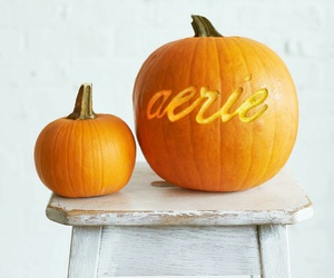 aerie, hipster, and pumpkin image