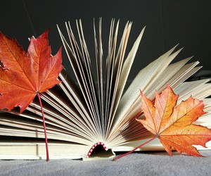 autumn and reading image