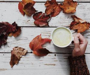 leaves and coffee image