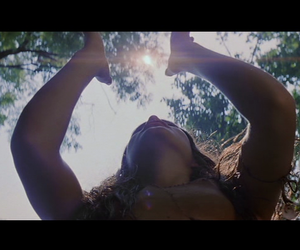 film, terrence malick, and the new world image