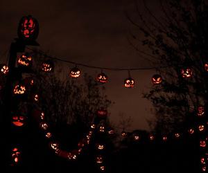 Halloween, autumn, and light image