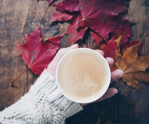autumn, quotes, and fall image