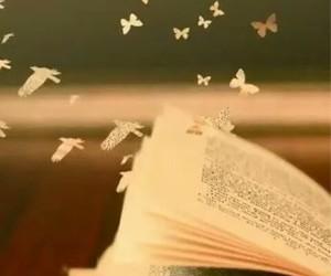 cultura, inspiracion, and libros image