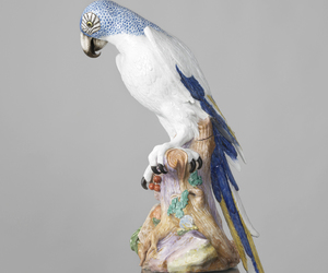 porcelain and blue macaw image