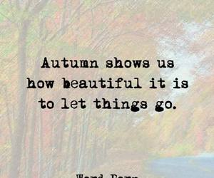 autumn, quotes, and beautiful image