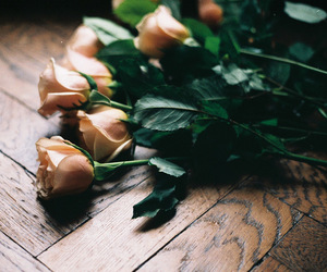 gift, roses, and home image