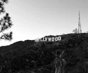 black, hollywood, and los angeles image