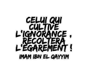 intelligence, rappel, and islam image