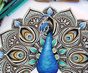 drawing, art, and peacock image