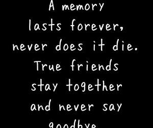 best friends, die, and memory image