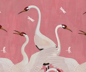 pink, art, and birds image