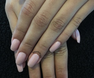 nails, Nude, and acrylic image