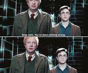 harry potter, order of the phoenix, and arthur weasley image