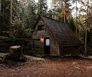 brown, cabin, and nature image