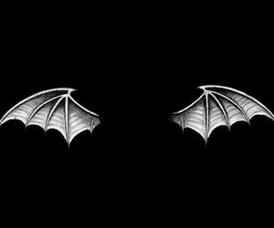 bat, bat wings, and black image