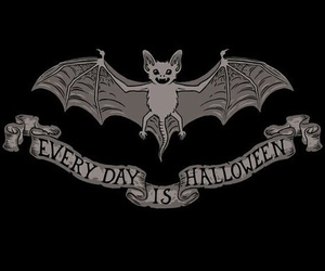 Halloween and bat image