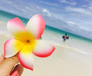 beach, flower, and hapiness image