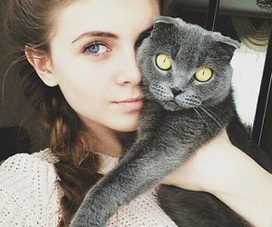 animals, cat, and girl image