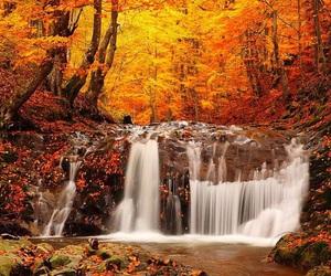 autumn, waterfall, and kira yukimura image