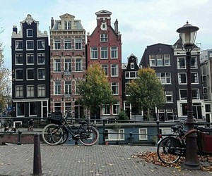 amsterdam, autumn, and autunno image