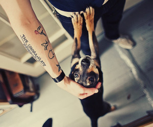 arm, inked, and cute image
