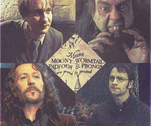 harry potter, sirius black, and james potter image