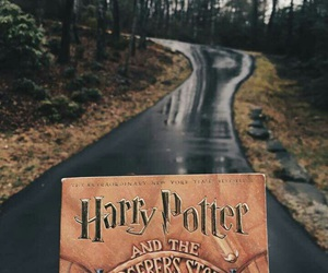 book, harry potter, and fall image