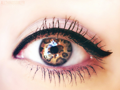 eye and panther image