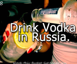 drink, vodka, and bucket list image
