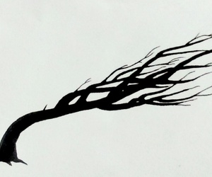 art, branches, and wind image