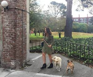 blogger, dogs, and dress image