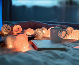 book, cozy, and lights image