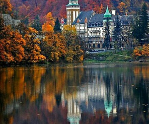 autumn, fall, and perfect image