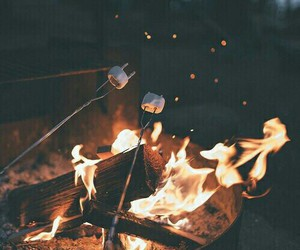 delicious, fire, and marshmallows image