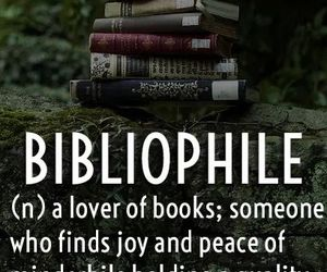 bibliophile, read, and books image