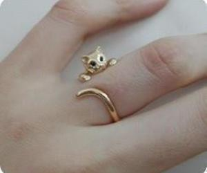 accessories, fashion, and cat image