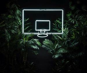 Basketball, green, and light image
