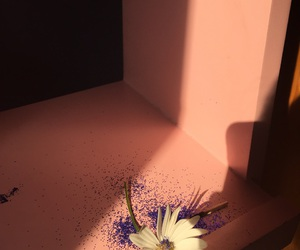 blue, flower, and glow image