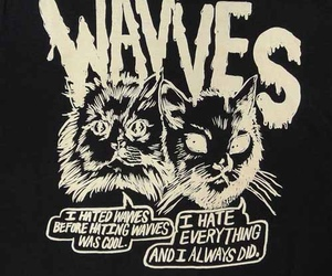 wavves image
