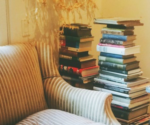animal, books, and couch image