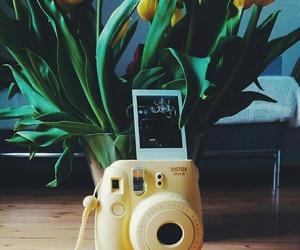 camera, polaroid, and flowers image