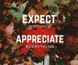 life, quote, and appreciate image