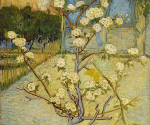 art, van gogh, and blossom image