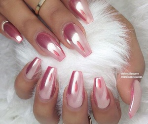 chrome, white fur, and pink image