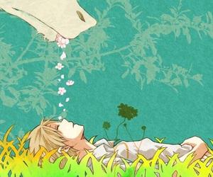 anime and natsume yuujinchou image
