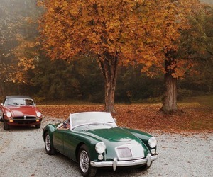 cars, vintage, and autumn image