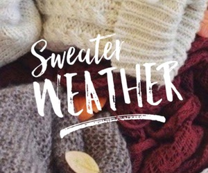 autumn, sweater, and quotes image