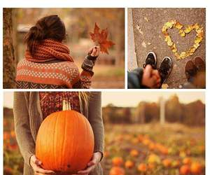 fall, season, and love image