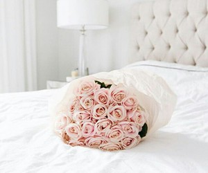 flowers, rose, and bed image